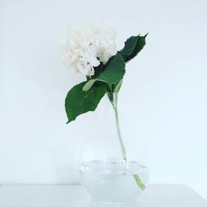 fleurs anniversaire Bezons